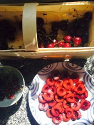 Preparing the cherries